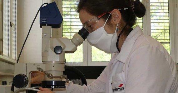 Serge Ferrari recherche microscope